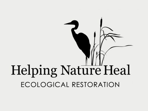 Helping Nature Heal, Living Shorelines Brochure