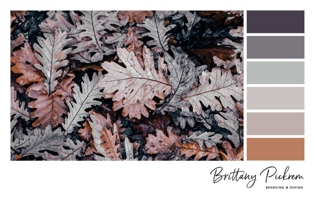 Behind The Design: Feminine, Fall Colour Palette – with HEX codes!