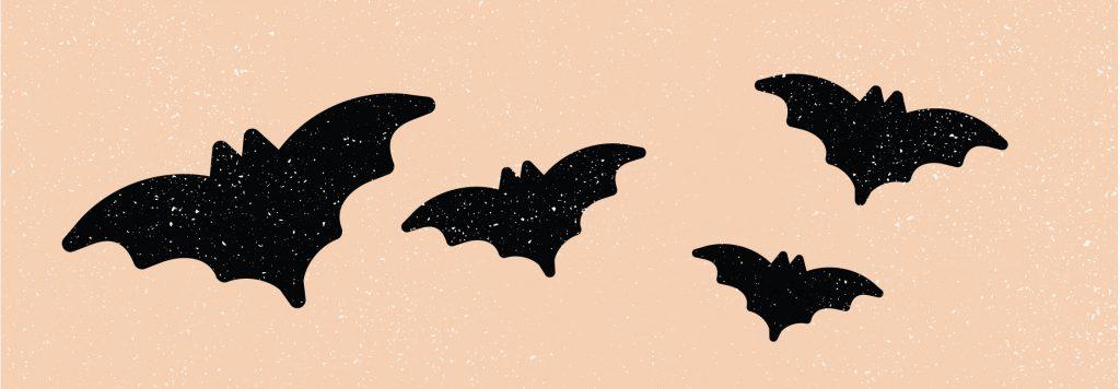 Bats, Halloween, brand, branding, Branding By Brittany, Brittany Pickrem, brand expert, Halifax, Nova Scotia